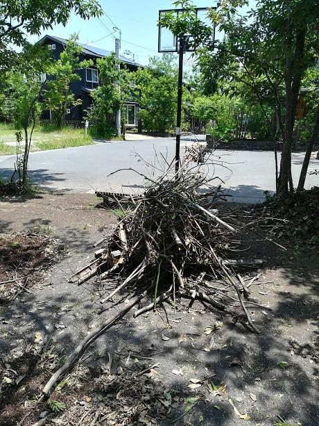 雑木林と8つの家 剪定枝